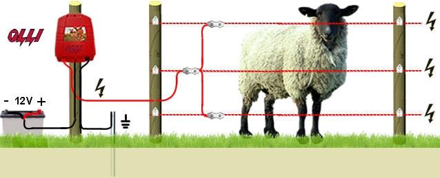 Электропастух для Овец с